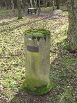 Orbiston Pillar  © Copyright Lairich Rig and licensed for reuse under this Creative Commons Licence